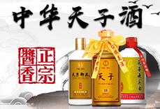 贵州华天子龙8国际娱乐网页版有限公司