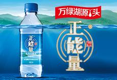 河源正能量更古潭山泉饮料亚博体育app官方下载苹果版