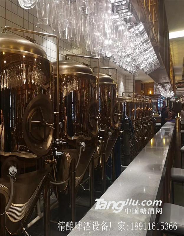 供应小型啤酒厂酿酒设备厂家免费酿酒技术实操培训