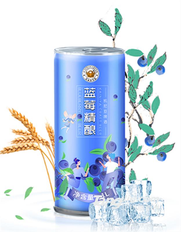 德式蓝莓果味精酿啤酒招商/厂家供货安徽南陵地区
