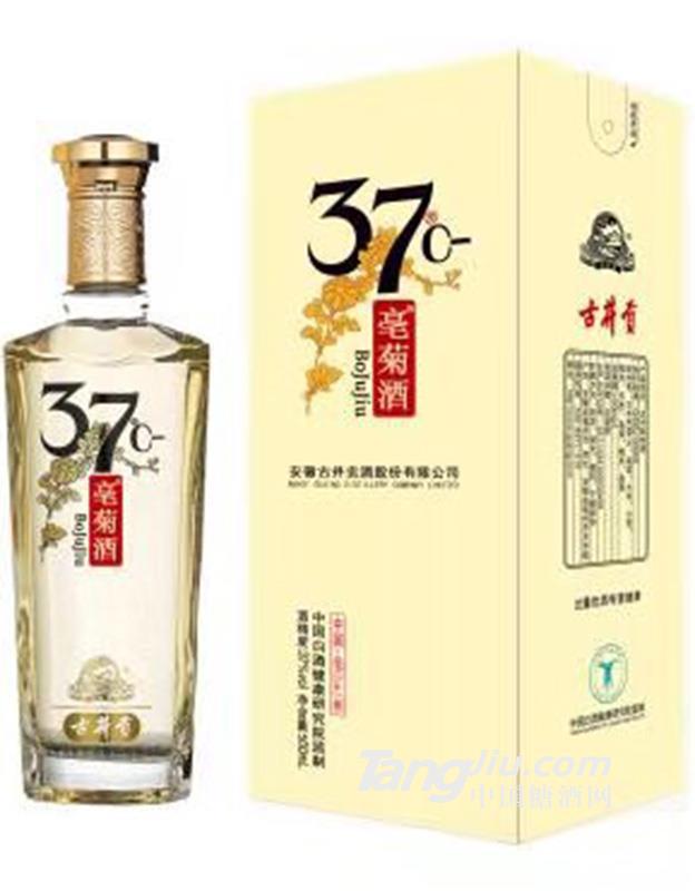 37°古井贡·亳菊单盒装