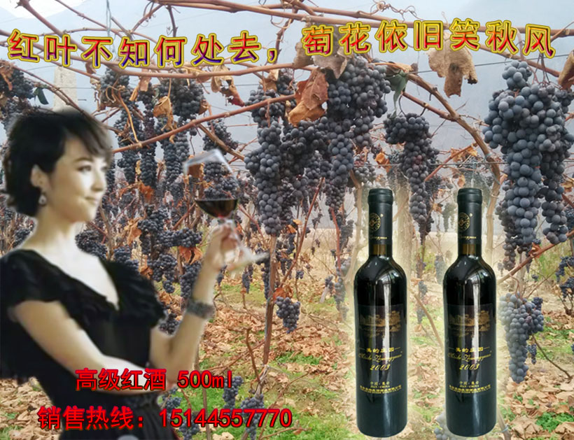 美的庄园2003冰葡萄酒