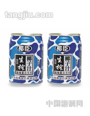 椰臣生榨椰子汁2罐装