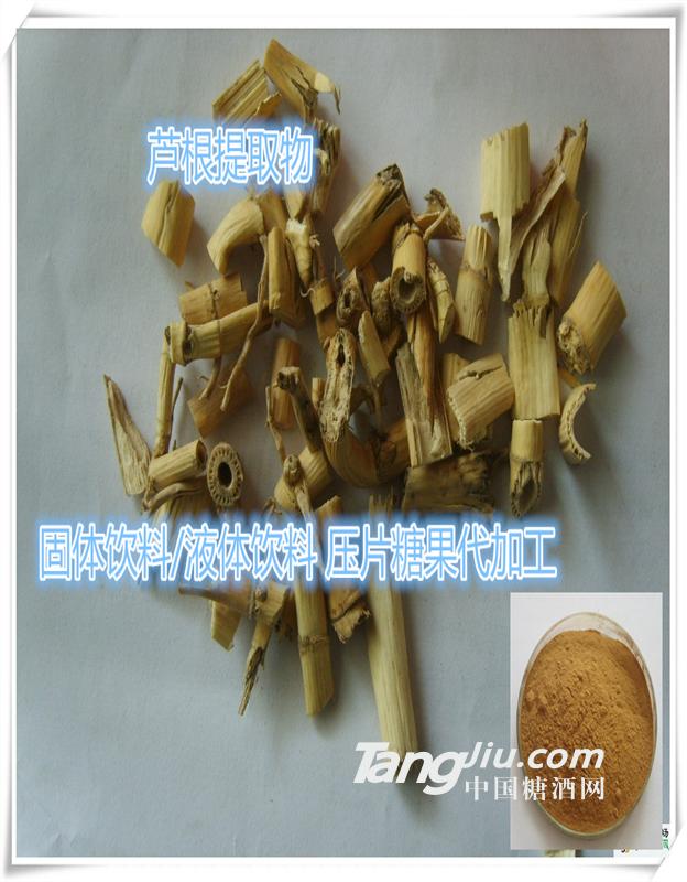 供应芦根提取物   鲜芦根粉