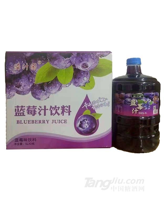 溢汁园蓝莓汁饮料5L×2瓶