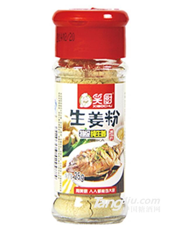 笑厨生姜粉调味料25g